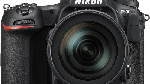 Nikon D500 | Nikon Camera Rumors