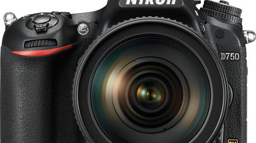 Nikon DSLRs | Nikon Camera Rumors